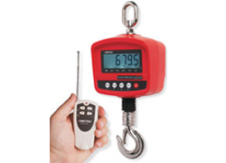 CDR Series Digital Crane Scales