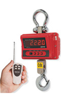 CMA Series Digital Crane Scales