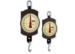 BD Series Hanging Scales